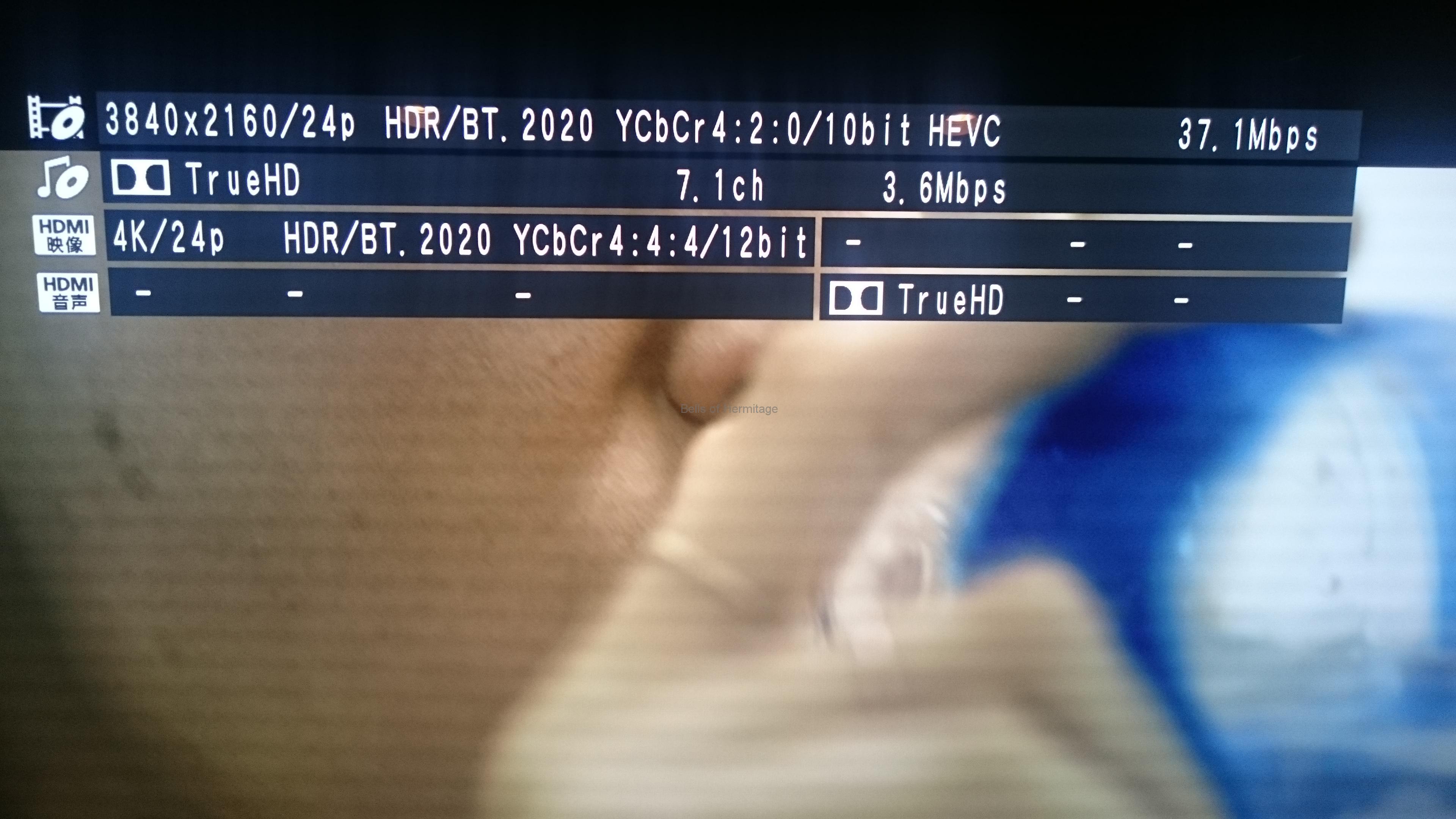 ホームシアター 4K/HDR Panasonic DMP-UB900 Urtra HD Blu-ray 4K Ultra HDソフト DVD Fantasium the Shallows ロスト・バケーション