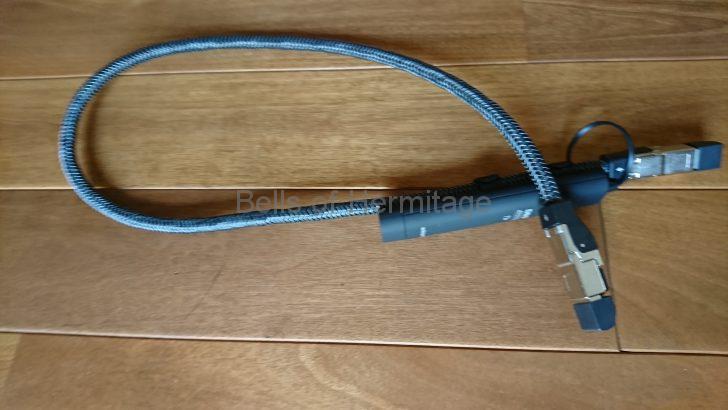 ネットワークオーディオ AudioQuest LANケーブル Ethernet Diamond レビュー 試聴;レンタル RJ45-G Forest HDMI-3スイッチングハブ NAS DELA