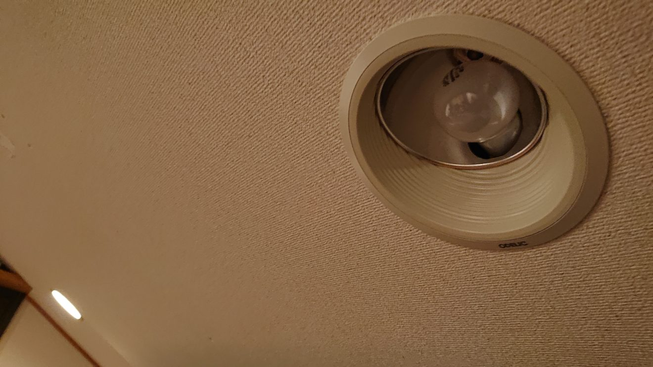 白熱電球を作っている国内企業は探せばまだある…シアタールームの調光電球を求めて