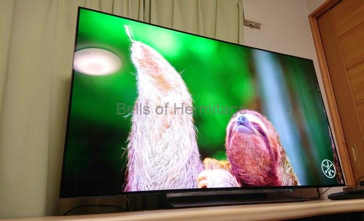 ホームシアター 4K/HDR Urtra HD Blu-ray ALR JORDAN Entry Si 朝日木材加工 ADK SD-2123ROA Marantz NR1710 X-BOX ONE S 有機ELテレビ TOSHIBA 有機ELレグザPro REGZA 55X830 HEOS