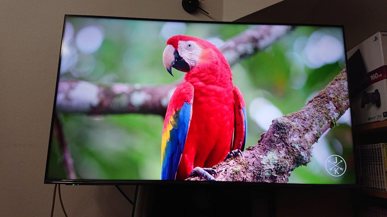 コストパフォーマンスの良い50型4K/HDRテレビが欲しい(6)バックライトブーストフィルムのメリット/デメリット?